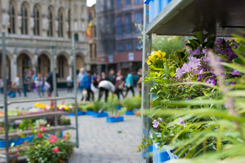 Flowers in the Grand Place-Market